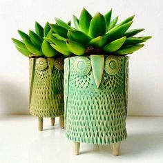 Cute idea to use plants as hair. The post Cactus Shot Glass & Succulent Espresso Cup & Handmade Ceramic Pottery & MADE TO ORDER appeared first on Trendy. Hand Built Pottery, Slab Pottery, Ceramic Pottery, Thrown Pottery, Pottery Vase, Ceramic Owl, Ceramic Clay, Glass Ceramic, Deco Nature
