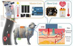 Picture: The Wearable Stress Monitoring System (WSMS) architecture based on multi-sensor platform (credits: Yan Cui, Mengjie Zhang, Jun Li, Hailing Luo, Xiaoshuan Zhang and Zetian Fu) Livestock, Jun, Sheep, Monitor, Transportation, Stress, Platform, Base, Architecture