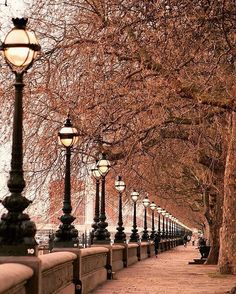 Chelsea embankment London