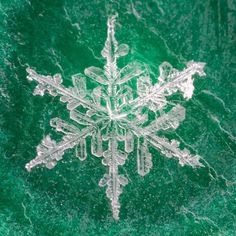 (98) Real Snowflake Photography by Karla Jean Booth