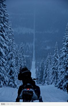 The Border Between Norway And Sweden