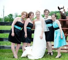 animal photobomb bride and horse