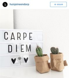 carpe diem                                                                                                                                                                                 More