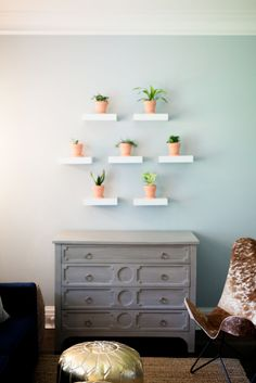 Potted plant wall gallery make the cutest addition to a fun bright living room