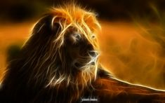 animal fractals | fractal animals by rydena digital art photomanipulation animals plants ...