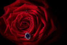 Inel de logodna din aur cu safir albastru si diamante Class Ring, Halo, Sapphire, Rings, Jewelry, Jewlery, Bijoux, Schmuck, Corona