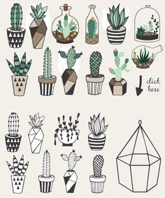 Hand drawn Succulents in Terrarium by lokko studio on Creative Market
