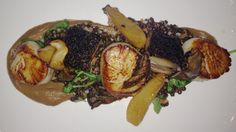 Coffee braised pork belly + scallops @ Gio