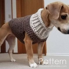 37 Crochet Dog Sweater Patterns 37 Crochet Dog Sweater patterns to keep your pooch's warm this winter. Stylish coats, hoodies and lots of unique and adorable designs that will keep your dog cozy and warm. Patterns form XXS dogs to large dogs inside. Crochet Sweater Design, Crochet Dog Sweater Free Pattern, Dog Coat Pattern, Sweater Patterns, Crochet Pattern, Small Dog Coats, Large Dogs, Large Dog Clothes, Pet Clothes