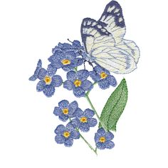 Forget-Me-Nots & Butterfly