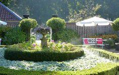 Een mooie september ochtend (2015). September, Garden, Plants, Garten, Lawn And Garden, Gardens, Plant, Gardening, Outdoor