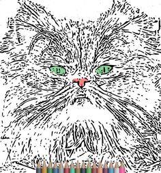 Adult Coloring Pages. Cat Coloring PagesAnimal print