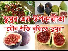 Benefits of Fig   ডুমুর এর উপকারীতা - যৌন শক্তি বৃদ্ধিতে ডুমুর   BD Heal...