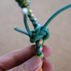 Dog collar, button knot