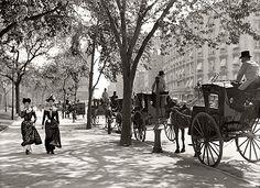 New York circa 1900. Cab stand at Madison Square.