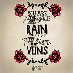 You are the smell before rain, you are the blood in my veins. Brand New lyrics