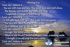 Missing you til we meet again my love