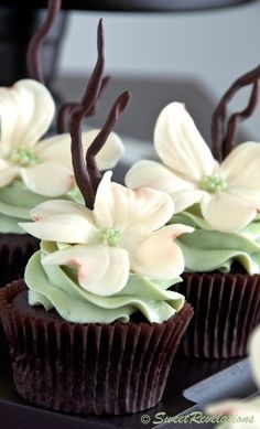 Chocolate Mint Cupcakes with beautiful white modeling chocolate flowers