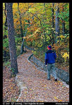 Hiker on trail amongst fall colors, Hot Spring Mountain. Hot Springs National Park, Arkansas