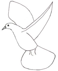 how to draw a pigeon step by step for kids