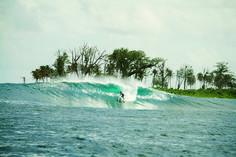 Surf. Mentawaii