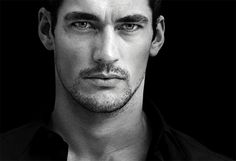 Pictures 2008 - David James Gandy