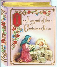 ]The Legend of the Christmas Rose.