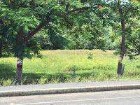 MPaniagua bienes raices: 0212001 Lote, Jobos, Santa Cruz, Guanacaste, Costa...