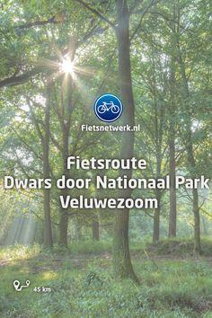 Netherlands, Hiking, Camping, Travel, Bike Trails, Bike Rides, The Nederlands, Walks, Campsite
