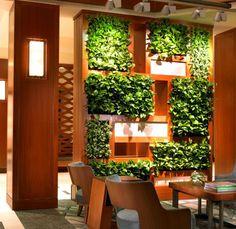 indoor_vertical_garden