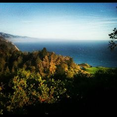 The view from Nepenthe Restaurant in Big Sur