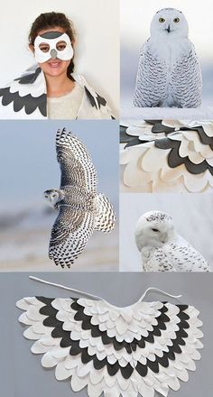 Good Absolutely Free Hedwig – Harry Potter's Snowy Owl Hedwig Harry Potter, Harry Potter Kostüm Diy, Harry Potter Cosplay, Owl Costume Kids, Owl Halloween Costumes, Bird Costume, Diy Costumes, Halloween Fun, Harry Potter Halloween Costumes