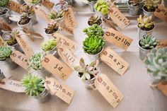 Succulent Placecards Holden Marolt Mining & Ranching Museum wedding