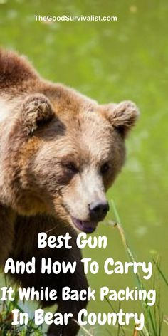 If you are going backpacking, and will be in bear country, what's the best gun to take with you? Find out here:  http://www.thegoodsurvivalist.com/best-gun-and-how-to-carry-it-while-backpacking-in-bear-country/