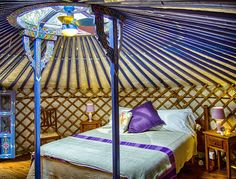 """Our """"YURTS"""""""