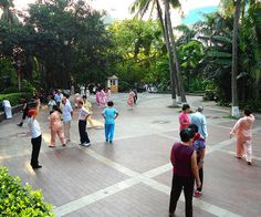 People practicing t'ai chi ch'uan (tai chi) in Haikou People's Park, Haikou City, Hainan Province, China