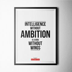 (240) Fancy - Ambition Print