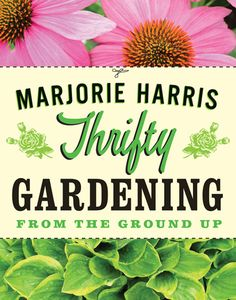 """Thrifty Gardening"" offers the best money-saving tips for creating a beautiful garden in any space. Read an excerpt from ""Thrifty Gardening"" on how to start vegetables from seeds."