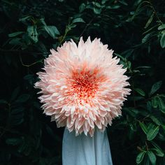 Tiffanie Turner, a San Francisco-based artist and architect, creates pink, red, yellow, orange and white flowers in crepe-paper. The originality is in the fact that these flowers are created in a g…