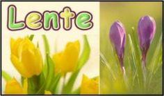 Dit is Lente! :: lente.yurls.net