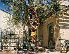 "Climbing a tree into a ""secret"" playhouse, Tim Hawkinson 