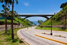 #ridecolorfully Miraflores, Lima PERU #katespadeny #vesta