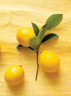 Lemon and Green Tea Cake Meringue Suisse, Swiss Meringue, Lemon Meringue Pie, Lemon Curd, Lemon Yogurt, Frozen Yogurt, Limoncello, Cream Cheese Fruit Dip, Lemon Cheesecake Recipes