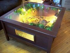 Astounding 25+ Super Cool and Unique Terrarium Coffee Table Ideas that Look Great https://bosidolot.com/2018/04/07/25-super-cool-and-unique-terrarium-coffee-table-ideas-that-look-great/