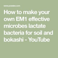 How to make your own EM1 effective microbes lactate bacteria for soil and bokashi - YouTube