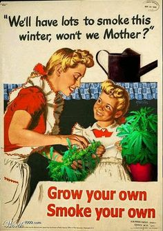 Because growing and smoking marijuana with your daughter is a good idea! O.o Weird Vintage Ads 8