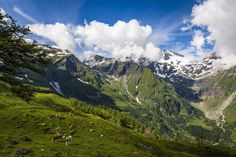 The Grossglockner High Alpine Road. © Österreich Werbung, Photographer: Filmspektakel.at