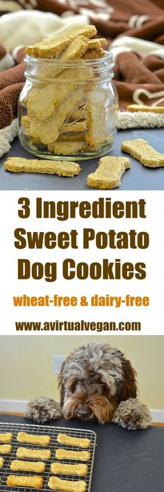Sweet Potato Dog Cookies!   *MADE* these were super easy and kinda delicious on their own. Very plain but in a good way. Bruno had some stomach issues early Saturday morning, so sweet potato is our go-to to help his tummy. I used the leftovers to make these treats :-)