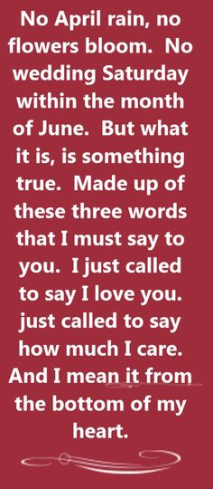 Stevie Wonder - I Just Called to Say I Love You -