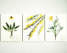Oregon Spring Flowers Print Set 113 118 190 от DayThreeCreations